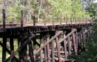 The fate of the Willow Glen trestle has been a hot topic amongst neighborhood activists. (Photo courtesy of http://wgbackfence.net)