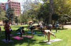 A yoga class in St. James Park. (Photo by James Reber)