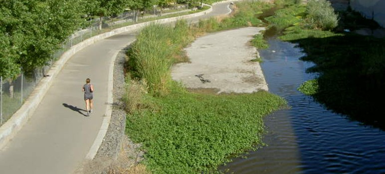 San Jose has sued Monsanto over PCB pollution in local waterways, including the Guadalupe River, which runs into the San Francisco Bay. (Photo via www.rhorii.com)