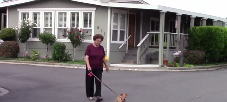 A resident, one of 150 who faces eviction, walks her dog in Winchester Ranch Mobile Home Park. (Image via YouTube)