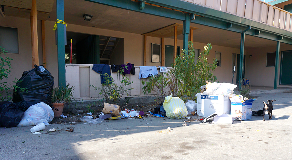 Trash strewn in the courtyard of Michael Lucich's Rexford Way apartment. (Photo by Jennifer Wadsworth)