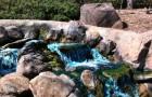 A stream runs through Rancho San Antonio County Park. (Photo by Ocee D., via Yelp)