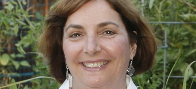 Helen Chapman is running for San Jose's District 6 council seat.